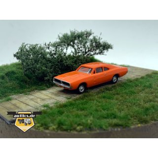 Dodge Charger (1969), orange